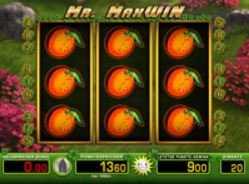 Mr Max Win Merkur online